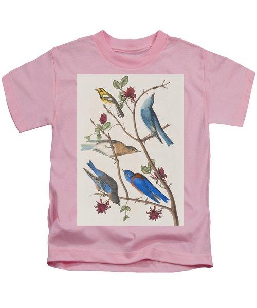 Western Blue-bird Kids T-Shirt