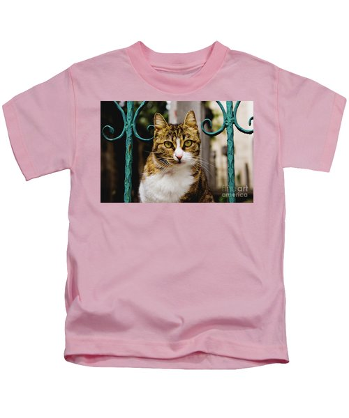 Cat On A Fence Kids T-Shirt