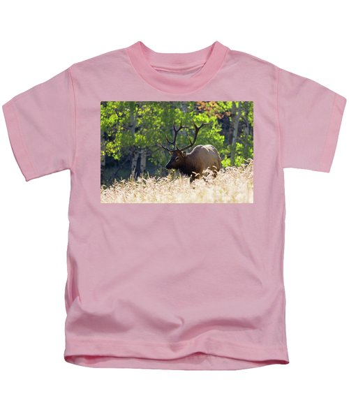Fall Color Rocky Mountain Bull Elk Kids T-Shirt