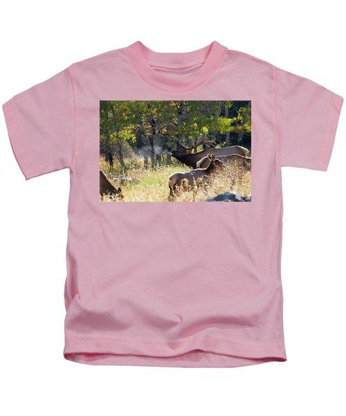 Rocky Mountain Bull Elk Bugeling Kids T-Shirt