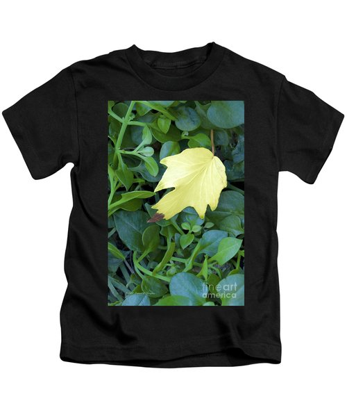 Fallen Yellow Leaf Kids T-Shirt