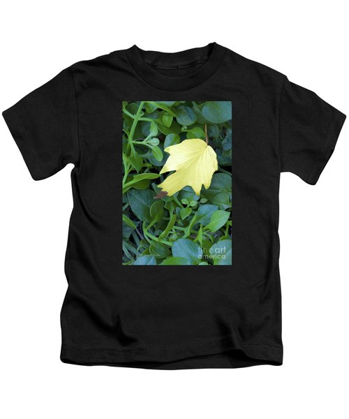 Fallen Yellow Leaf Kids T-Shirt