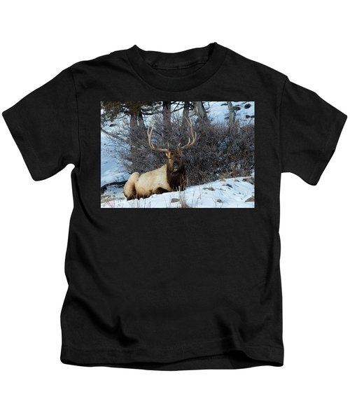 Rocky Mountain Elk Kids T-Shirt