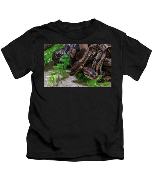Two Burmese Pythons Python Bivittatus Kids T-Shirt