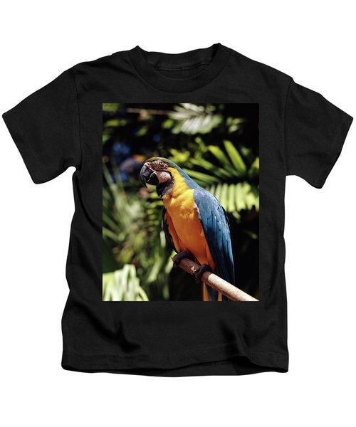 1960s Blue And Yellow Macaw Parrot Kids T-Shirt