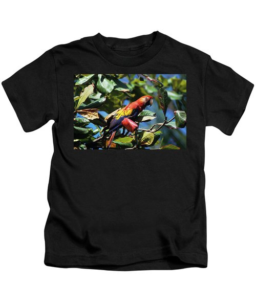 1990s Scarlet Macaw Ara Macao In Almond Kids T-Shirt