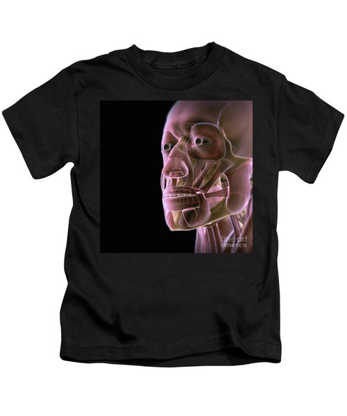 Muscles Of The Face Kids T-Shirt