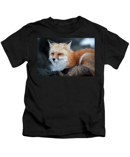A Red Fox  On The Summit Of Mt Kids T-Shirt