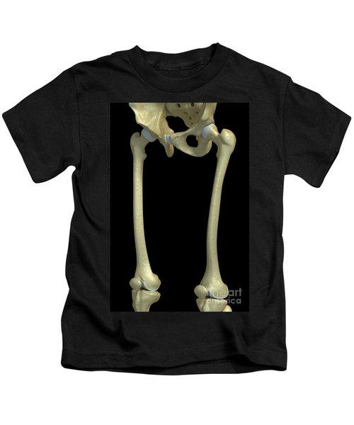 Bones Of The Upper Legs Kids T-Shirt