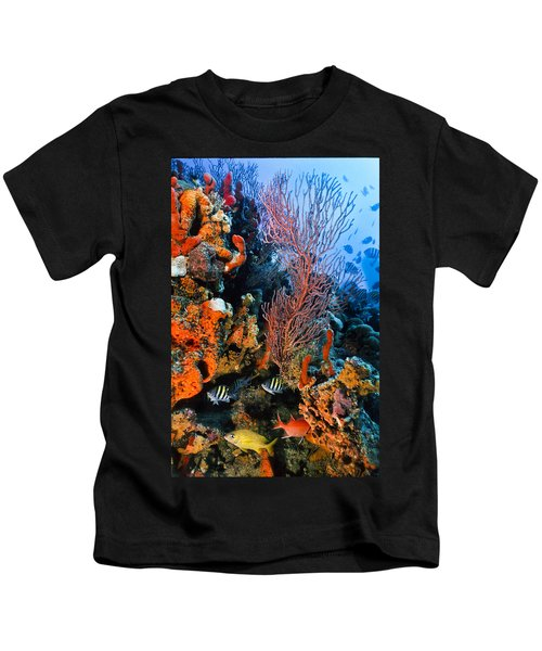A Colorful Ledge Kids T-Shirt