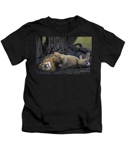 African Lion Panthera Leo Wild Kenya Kids T-Shirt