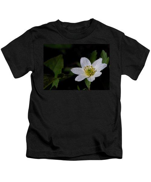 Anemone Nemorosa  By Leif Sohlman Kids T-Shirt