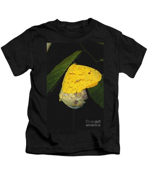 Apricot Sulfur Butterflies Kids T-Shirt