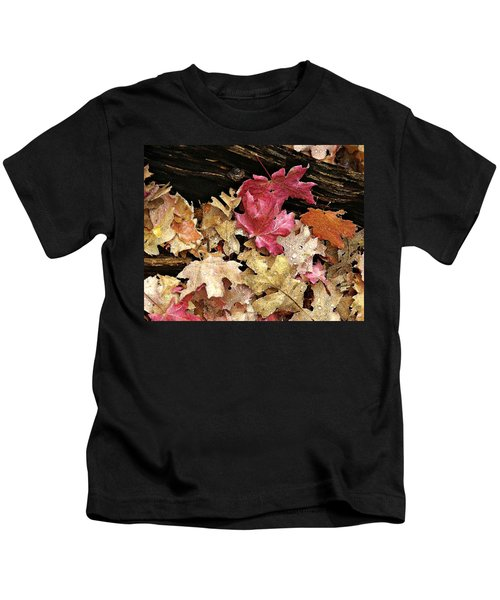 Arizona Fall Colors Kids T-Shirt