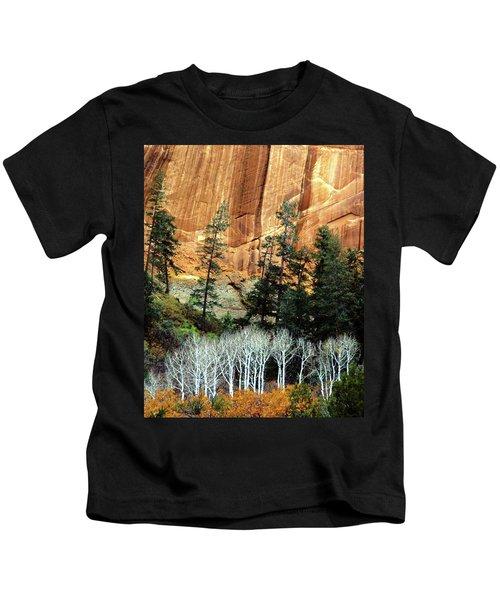 Arizona's Betatkin Aspens Kids T-Shirt