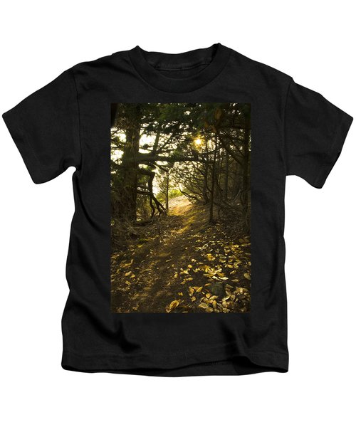 Autumn Trail In Woods Kids T-Shirt