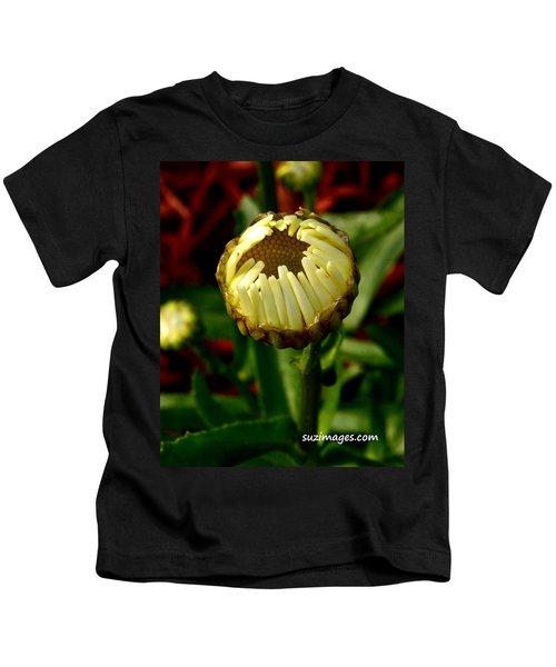Baby Daisy Kids T-Shirt