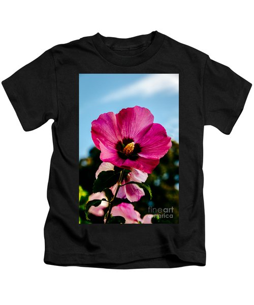 Baby Pink Hollyhock Kids T-Shirt
