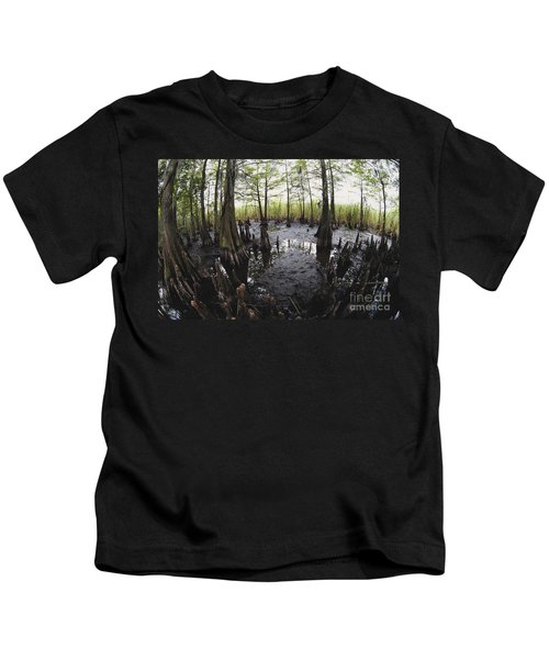 Bald Cypress Knees Kids T-Shirt