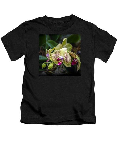 Beauty Of Orchids 3 Kids T-Shirt
