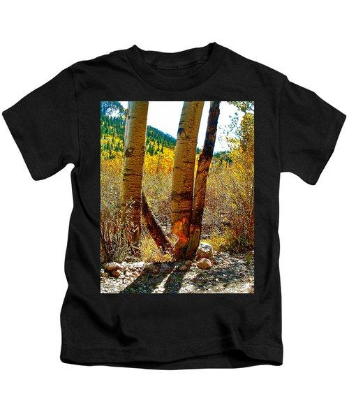Beaver Bites On Aspen In Clear Creek Canyon-colorado Kids T-Shirt