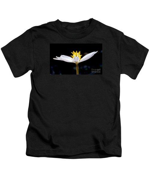 Bloodroot 1 Kids T-Shirt