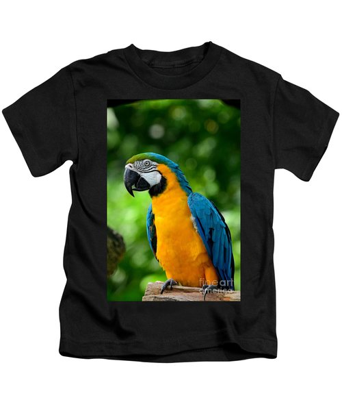 Blue And Yellow Gold Macaw Parrot Kids T-Shirt