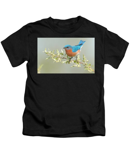 Kids T-Shirt featuring the photograph Bluebird Floral by William Jobes