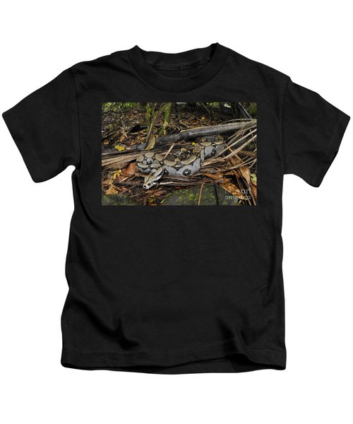 Boa Constrictor Kids T-Shirt by Francesco Tomasinelli