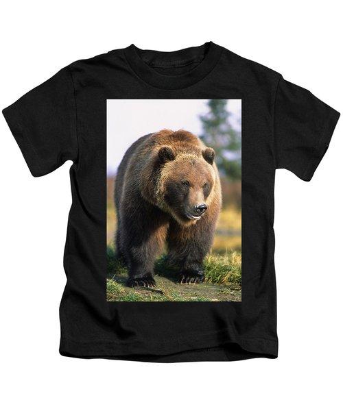 Brown Bear Standing In The Grass Kids T-Shirt