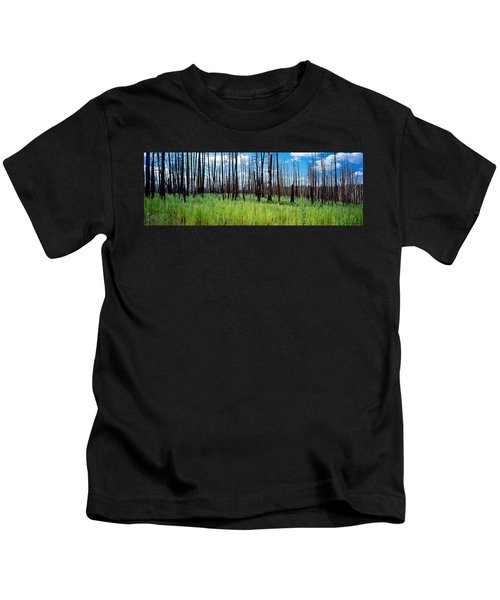 Burnt Pine Trees In A Forest, Grand Kids T-Shirt