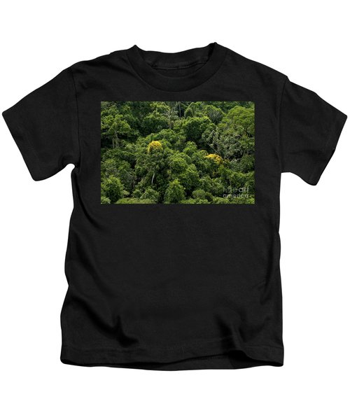 Canopy Of Amazon Rain Forest Kids T-Shirt