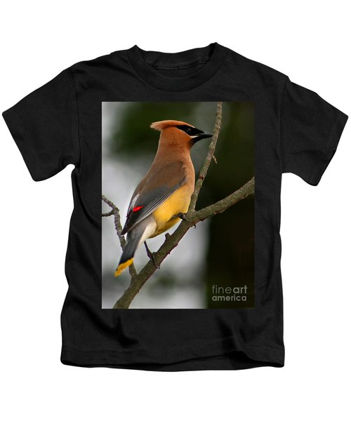 Cedar Wax Wing II Kids T-Shirt by Roger Becker