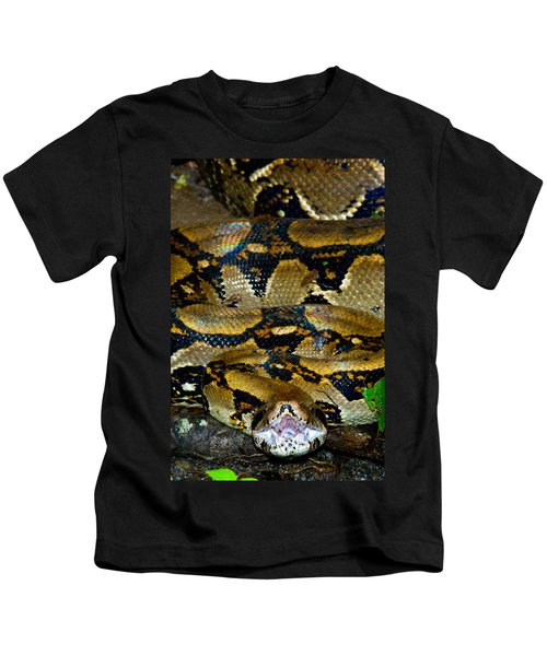 Close-up Of A Boa Constrictor, Arenal Kids T-Shirt by Panoramic Images