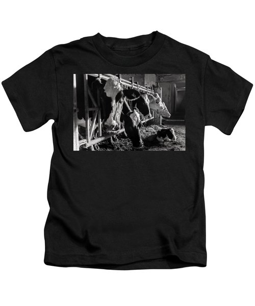 Cows In The Barn2 Kids T-Shirt