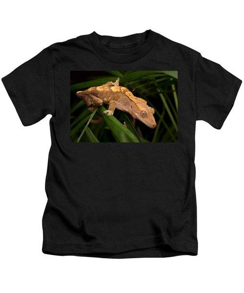 Crested Gecko Rhacodactylus Ciliatus Kids T-Shirt