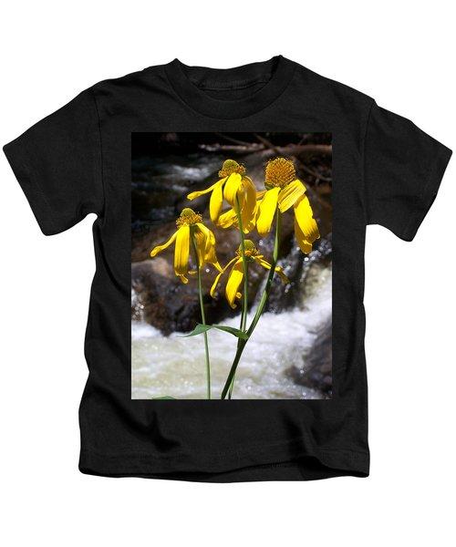 Daisies Near The Water  Kids T-Shirt