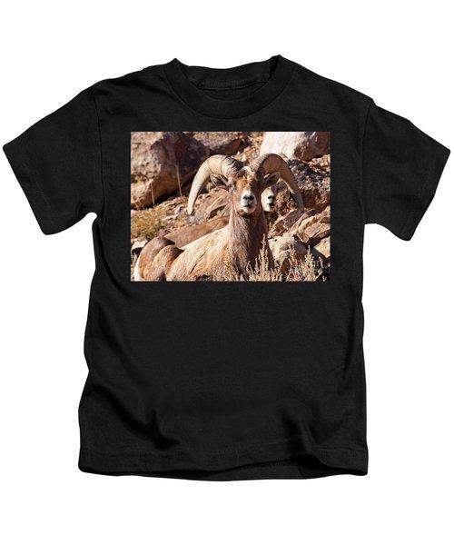 Desert Bighorn Sheep Kids T-Shirt
