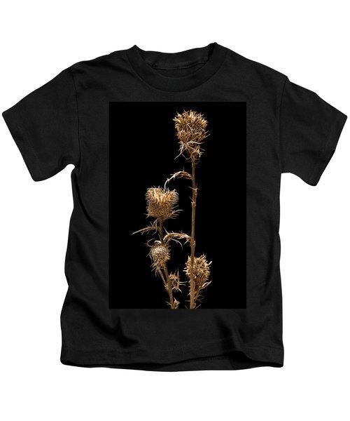 Dried Prairie Blazing Star Kids T-Shirt