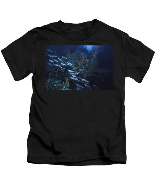Dusk Over The Ledge Kids T-Shirt