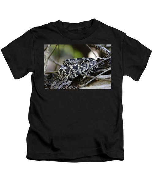 Eastern Diamondback-1 Kids T-Shirt by Rudy Umans