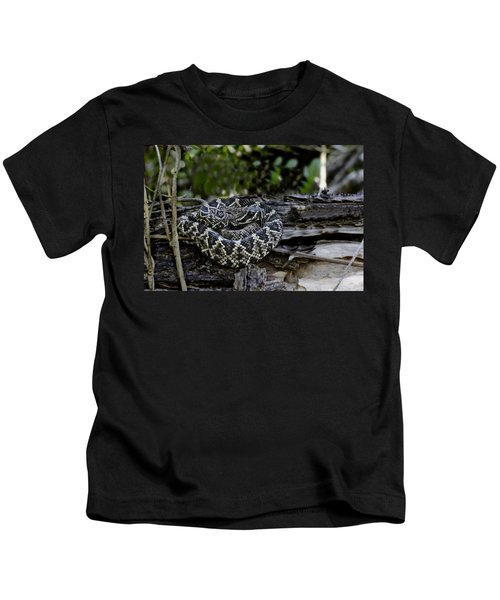 Eastern Diamondback-2 Kids T-Shirt by Rudy Umans
