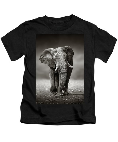 Elephant Approach From The Front Kids T-Shirt