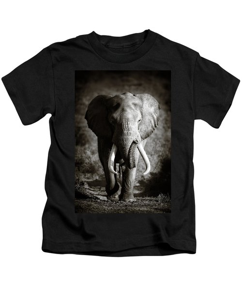Elephant Bull Kids T-Shirt