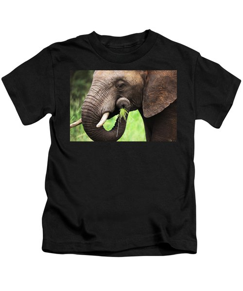 Elephant Eating Close-up Kids T-Shirt