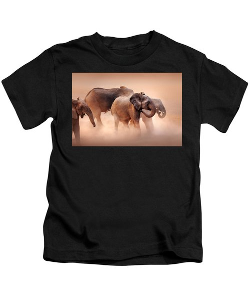 Elephants In Dust Kids T-Shirt