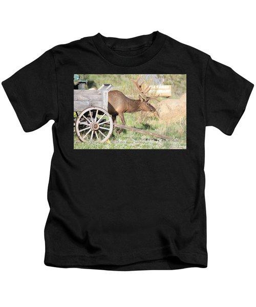 Elk Drawn Carriage Kids T-Shirt