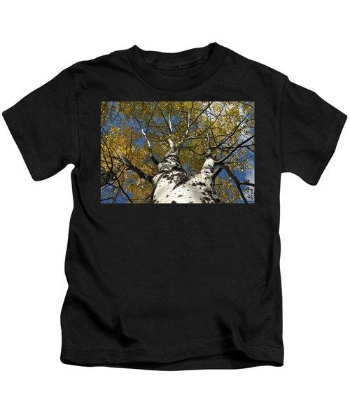 Fall Aspen Kids T-Shirt