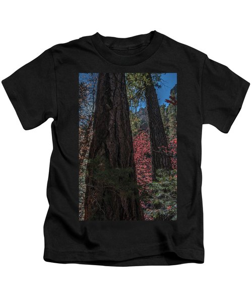 West Fork Perspective Kids T-Shirt
