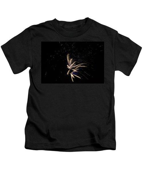 Fireworks - Dragonflies In The Stars Kids T-Shirt
